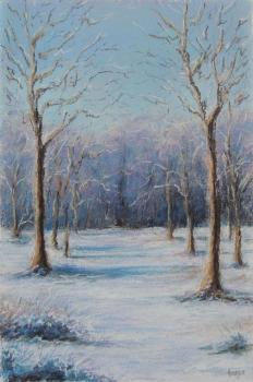 2013, paysage, janvier sous la neige
